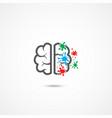 brain icon on white vector image