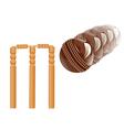 cricket sport vector image