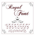 font typeface script typeface for labels and vector image