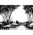 lake in the birch forest vector image