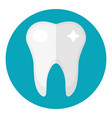 healthy white teeth icon flat style dentistry vector image
