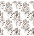 seamless pattern with the image of roses vector image