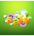 Sale Poster With Green Background vector image