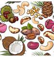 seamless pattern of walnut coconut cashew kola vector image vector image
