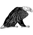 bald eagle black and white vector image