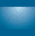 realistic water drops on blue background vector image