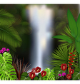 Beautiful on the waterfall background vector image
