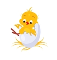 Cartoon Chicken in an Egg vector image