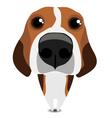 Funny sad beagle vector image