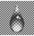 transparent bubbles vector image
