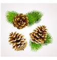 cones vector image