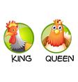 Chicken being king and queen vector image vector image