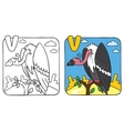 Funny vulture coloring book Alphabet V vector image