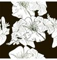 Wildflowers blooming delicate flowers background vector image