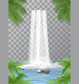 waterfall stones jungle vector image