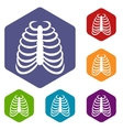 Rib cage icons set vector image
