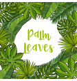 frame of tropical palm leaves with round place for vector image vector image