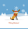 christmas card santa dog in forest symbol of vector image