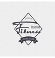 Fitness - badges lettering calligraphy is vector image