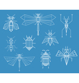 Geometric Insects vector image