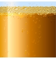 Beer background Texture of drink in glass vector image