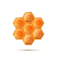 Bright glossy honeycomb with shadow on white vector image