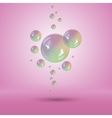 Rainbow bubbles multicolor soap bubble vector image vector image
