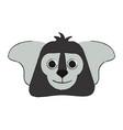 cute koala animal vector image