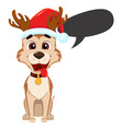 funny dog wearing santa claus hat and with empty vector image