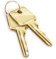 sheaf of gold keys vector image vector image