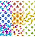 Set colorful floral patterns vector image vector image