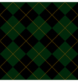 Black Green Diamond Background vector image