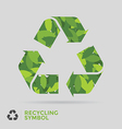 Leaf Recycle Symbol vector image vector image