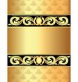 Vintage Golden Frame Background vector image vector image