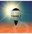 Abstract sunset with triangle field perspetive vector image