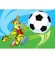 Tiger play spccer