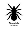 a black spider tarantula vector image