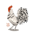 Rooster with zentangl elements vector image