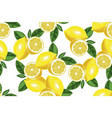 nice lemon background hand drawn seamless vector image