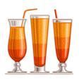 orange cocktails vector image