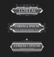 silver logos calligraphic design template vector image