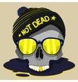 skull punk star design vector image