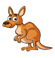 kangaroo with happy smile vector image