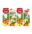 Template Packaging Design Pineapple Juice vector image