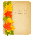 vintage autumn background vector image