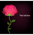 Beautiful rose on black background card with a vector image vector image