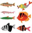 animal aqua aquarium vector image vector image