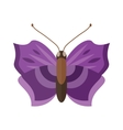 Colored cartoon butterfly isolated on white vector image
