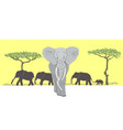 herd of elephants vector image