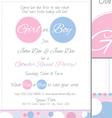Baby Reveal Postcard Invitation vector image vector image